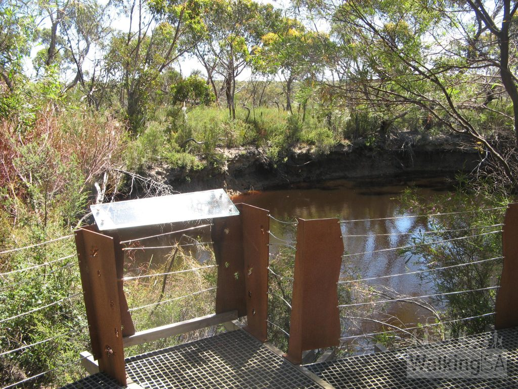Viewing platforms are scattered around the waterhole. Watch and wait quietly to see if you spot the movements of a platypus. Dawn and dusk are the best times to spot one.
