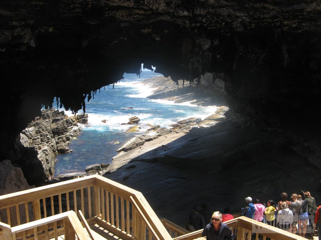 Viewing platforms inside Admirals Arch let you watch the seals