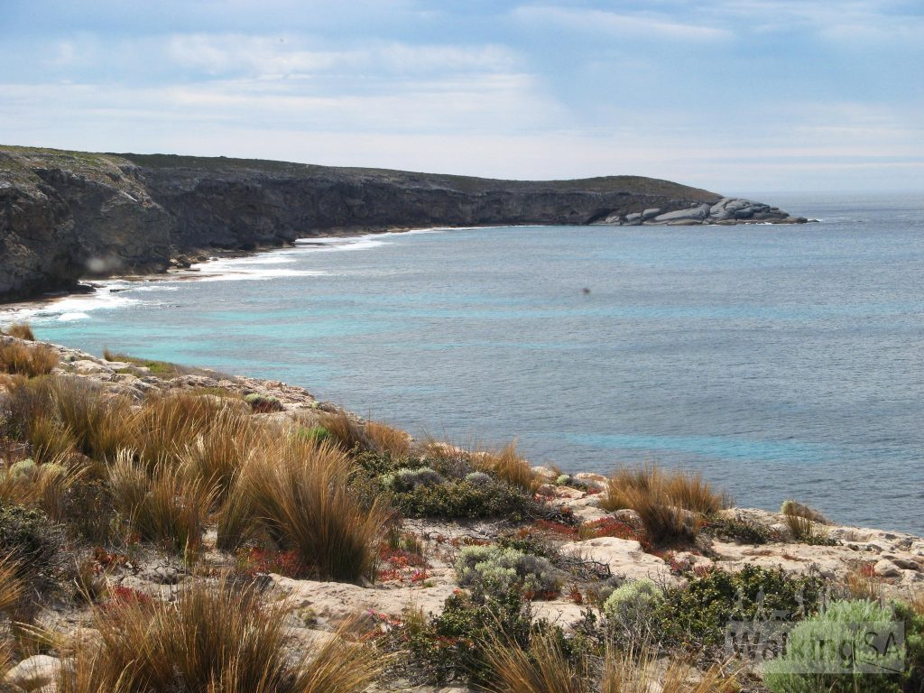 Day 4, Grassdale Section, Kangaroo Island Wilderness Trail