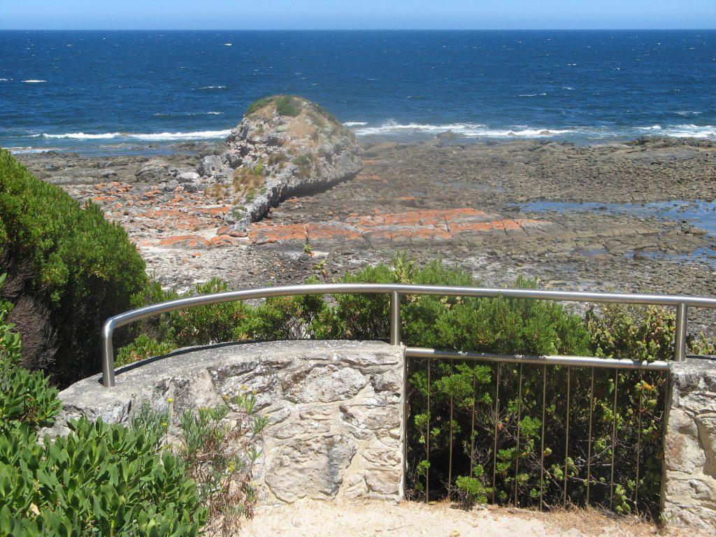 Tadpole Cove Walk