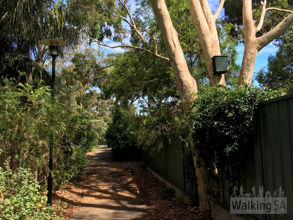 Andrews Walk is a path that meanders from Michael Perry Botanic Reserve back to Hallet Road