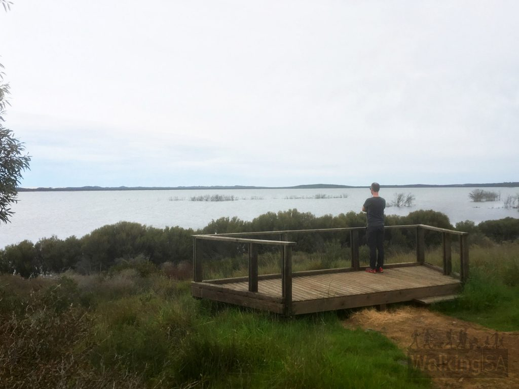 Bald Hill has views of the Murray Lagoon