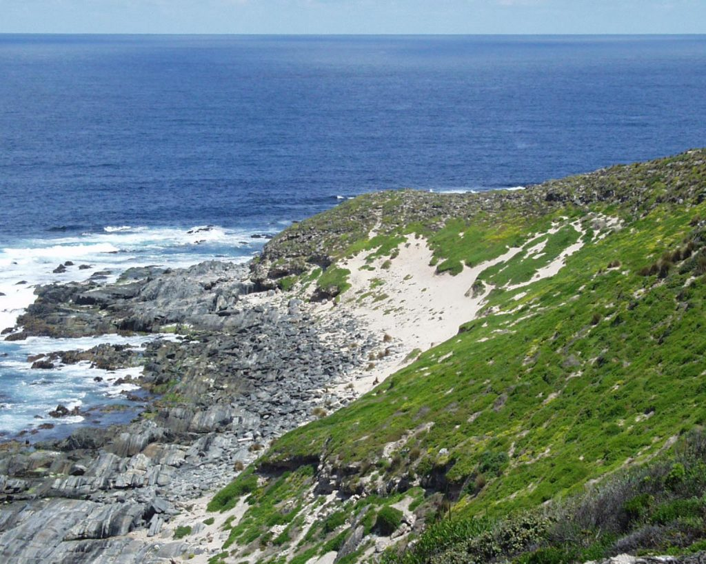 Cape Gantheaume headland. Photo courtesy of the Friends of Cape Gantheaume