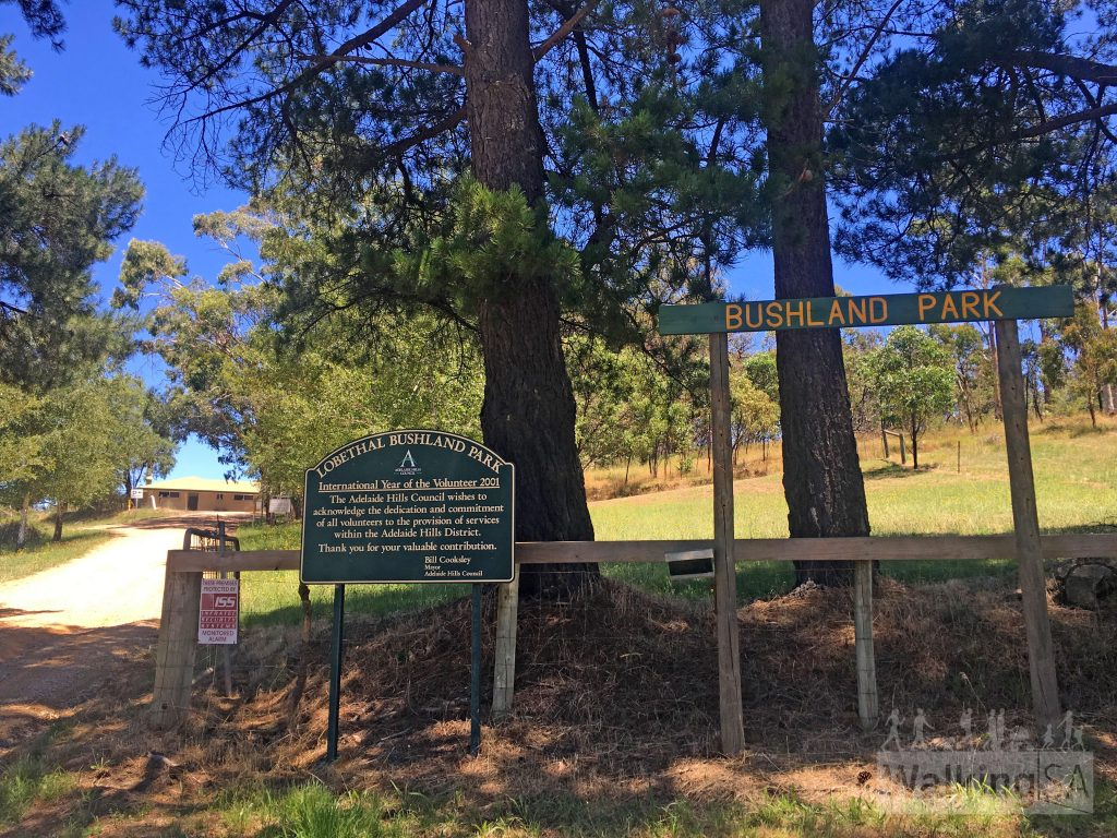 Entrance to Lobethal Bushland Park off Kenton Valley Road. This gate is open from 8am to 5pm daily.