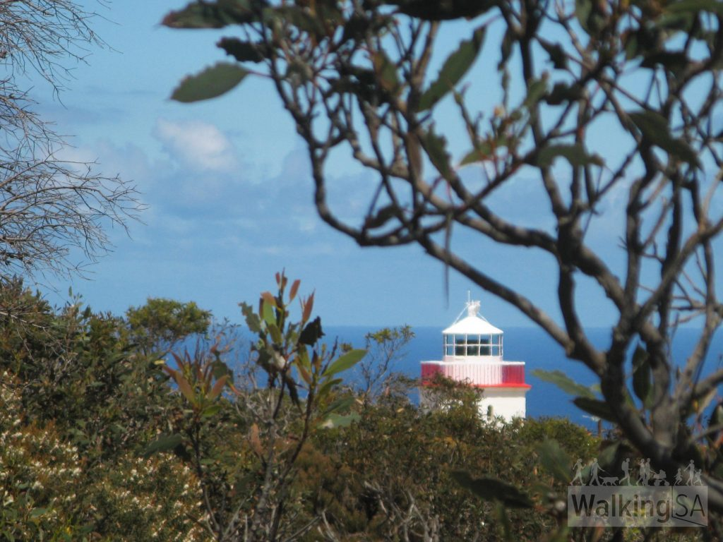 First glimpses of the Cape Borda Lighthouse on the  Return Road Hike