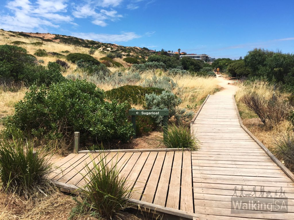 "Optional sidetrip to the Sugarloaf and the <a href=""https://www.walkingsa.org.au/walk/find-a-place-to-walk/glacial-hike-hallett-cove-conservation-park/"">Glacial Hike</a>"
