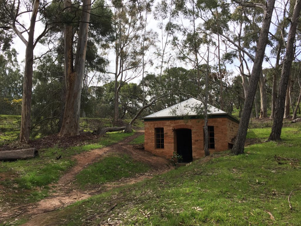 The Pines Conservation Reserve, Kapunda (Taylors Run Walking Trails)