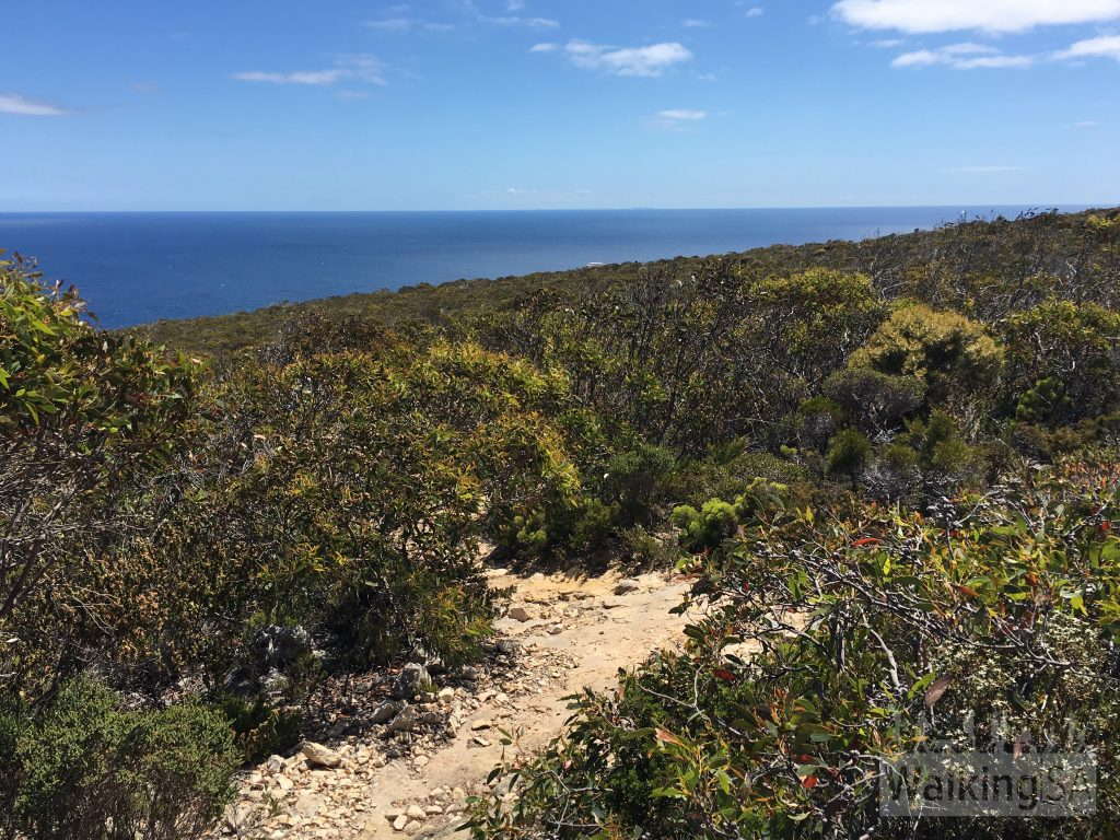 The Clifftop Hike walking trail