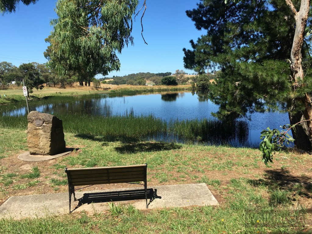 The dam adjacent the picnic area in Lobethal Bushland Park