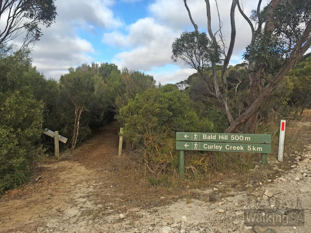 The eastern trailhead of the Bald Hill Walk and Curley Creek Hike on Seagers Road