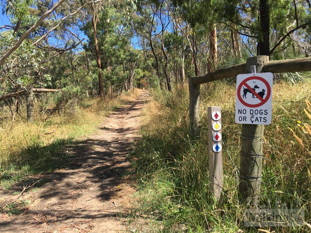 "The four hike are marked with these coloured arrows, which <a href=""https://www.walkingsa.org.au/wp-content/uploads/2017/01/Map-of-4-hiking-trails-in-Lobethal-Bushland-Park.pdf"">correspond with our map</a> (except the brown one is shown in purple)"