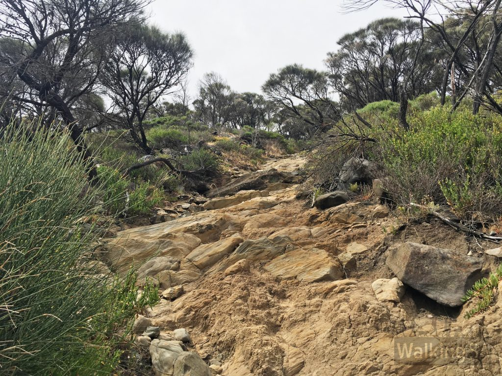 The hike descends the trackway. It's a steep rock scramble