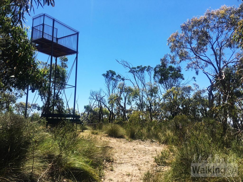 """The tower at the Lookout. Unfortunately as at January 2017 the ladder has been removed. There are some limited views from the lookout summit, but better views as you walk down the yellow route from T to B as marked on the <a href=""""https://www.walkingsa.org.au/wp-content/uploads/2017/01/Map-of-4-hiking-trails-in-Lobethal-Bushland-Park.pdf"""">map</a>"""