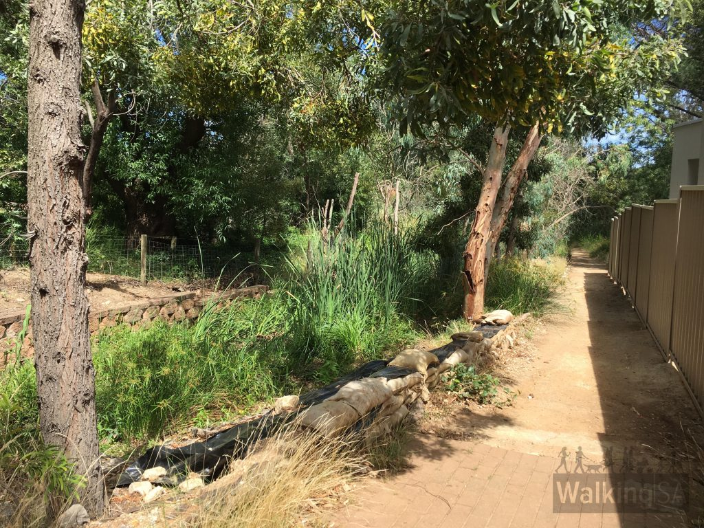 The walking path along Willowbridge Reserve follows Second Creek