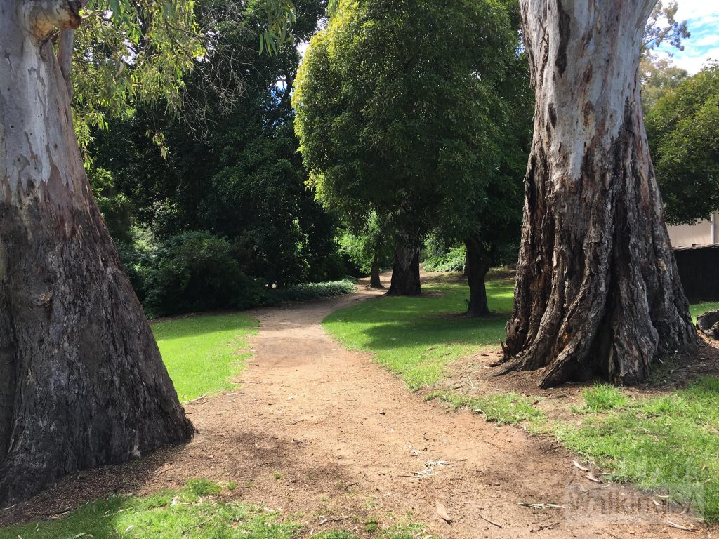 The walking path through Hubbe Court Reserve