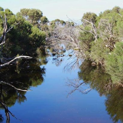 Timber Creek Walk