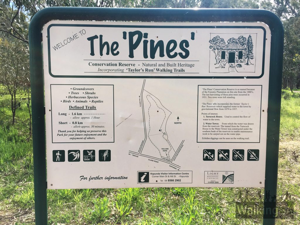 Trailhead sign at The Pines with the Taylor's Run Walking Trails