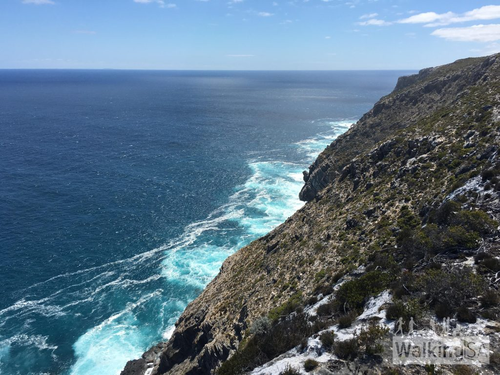 View from the Clifftop Hike lookout