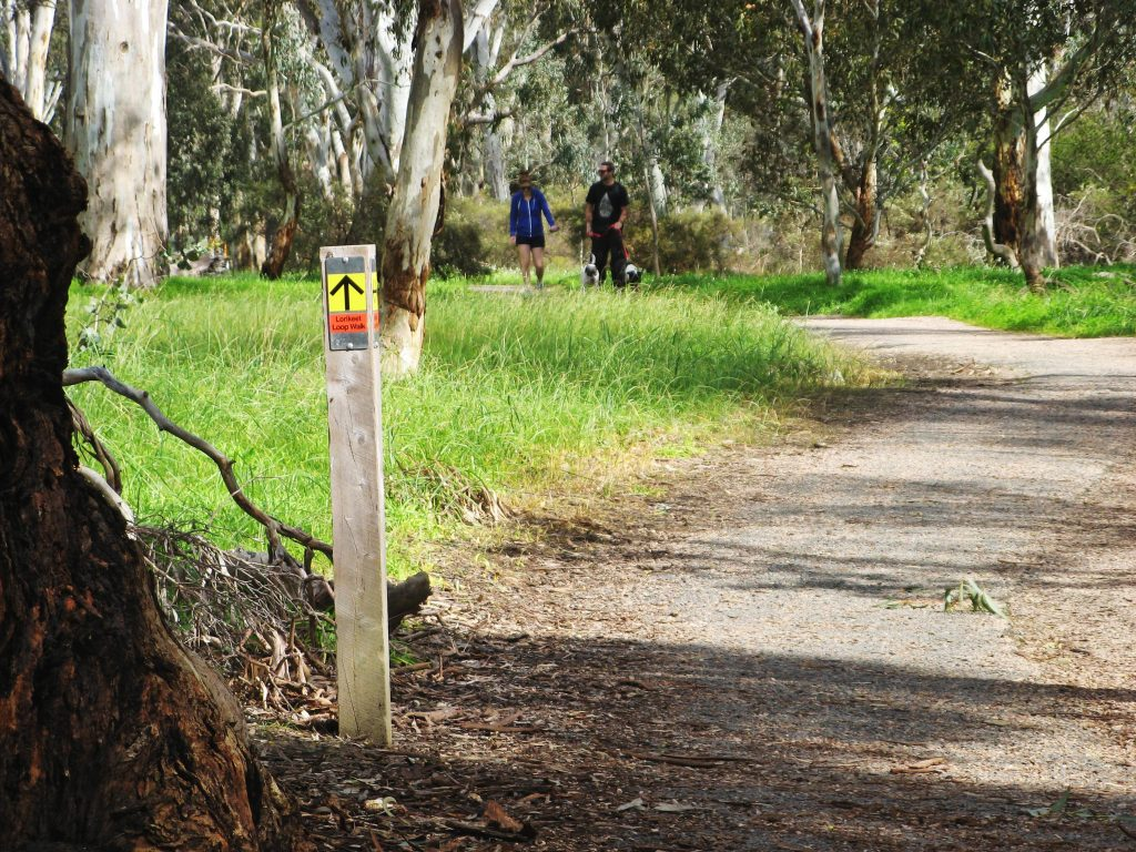 Lorikeet Loop Walk, Belair National Park