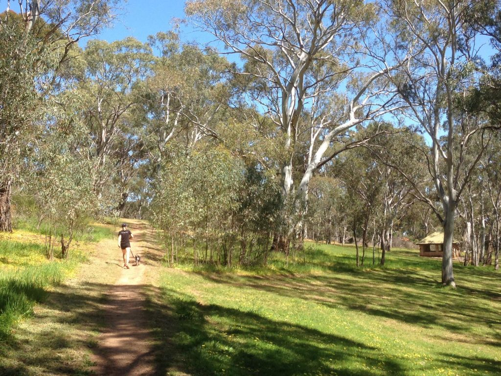 Fourth Creek Walk, Morialta Conservation Park