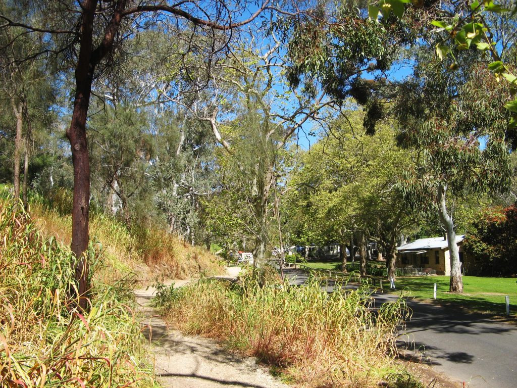 Wirraparinga Trail Loop, Brownhill Creek