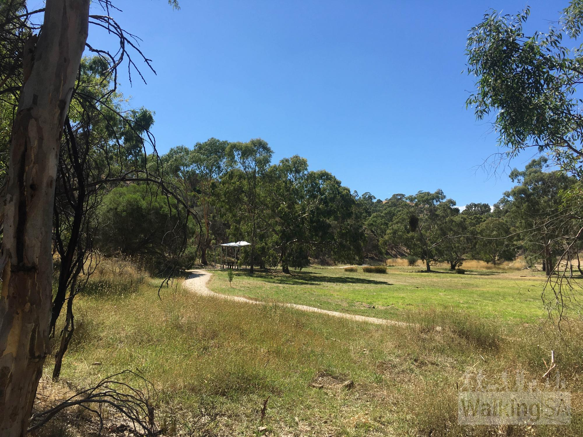 Little Quarry Loop | Anstey Hill Recreation Park | New 2017