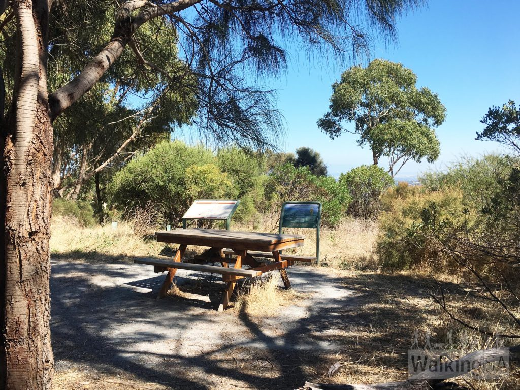 The picnic table and signage at the Lookout, on the Silver Mine Loop in Anstey Hill Recreation Park