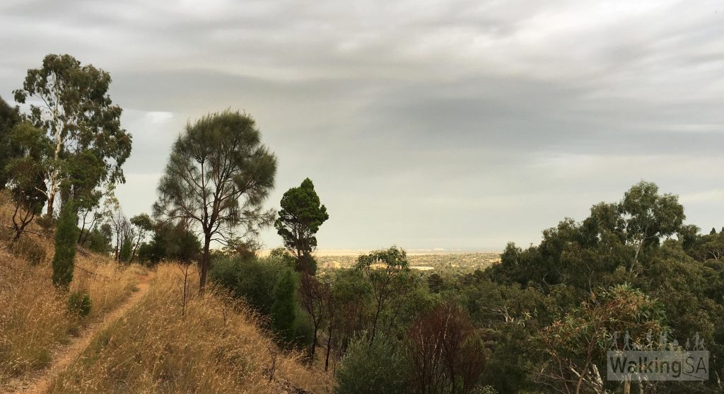 Views over the Adelaide Plains from the walking trail above the quarry, on the Geological Hike