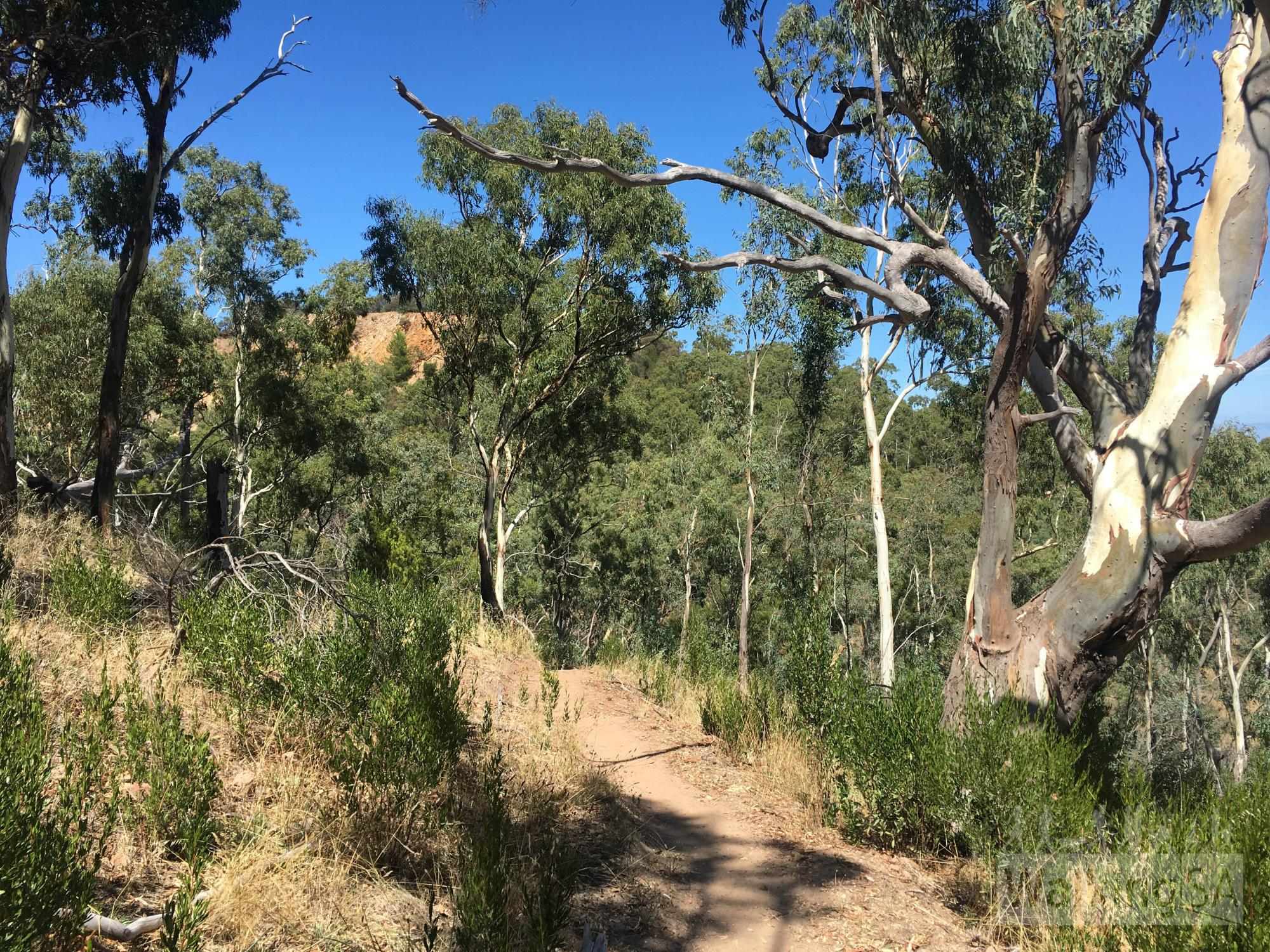 Quarry Views Hike   Anstey Hill Recreation Park   New 2017 Trail