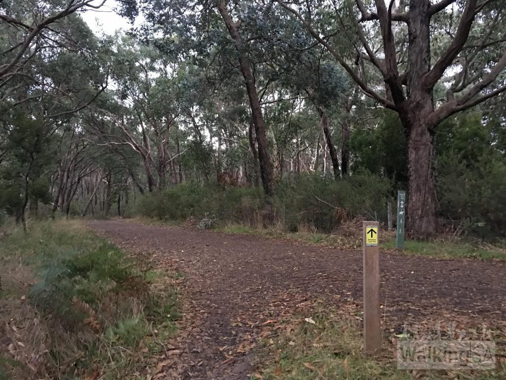 Queens Jubilee Drive, on the Adventure Loop Trail