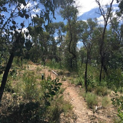 Roachdale Nature Trail