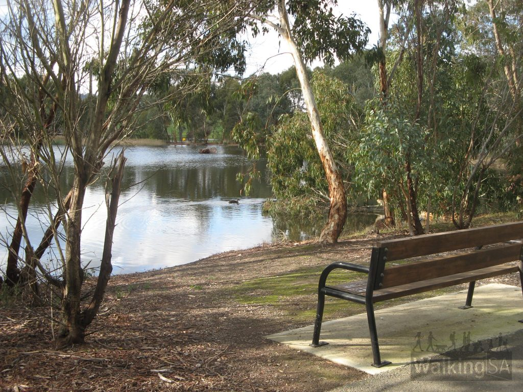 There is plenty of seating provided around the wetlands at approximately 300 metre intervals, to cater for the elderly and young