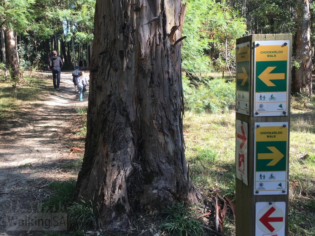 The Chookarloo Walk is well marked with green and yellow signposts. The 1,200km Heysen Trail follows some of the Chookarloo Walk.