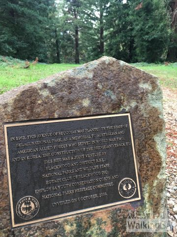 "The plaque at the avenue of sequoias, a WW2 memorial. The plaque reads: ""In 1962, this avenue of sequoias was planted by the staff of Belair National park, as a memorial to Australian and American forces who served in World War Two, and in Korea. The construction of the bridge and track to this site was a join venture by Blackwood and District RSL; National Parks and Wilflie staff; Rotary Club of Blackwood Inc; Employ SA Youth Conservation Corps; and National Parks Heritage Committee. Unveiled on 6 October, 2008."""