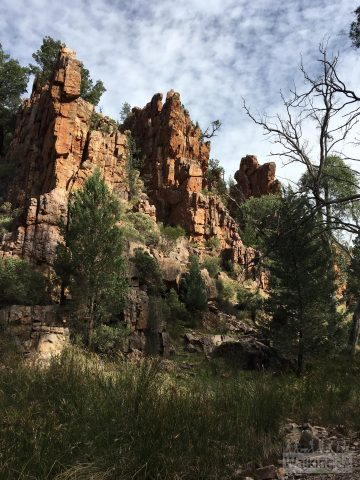 Towering cliffs of Warren Gorge