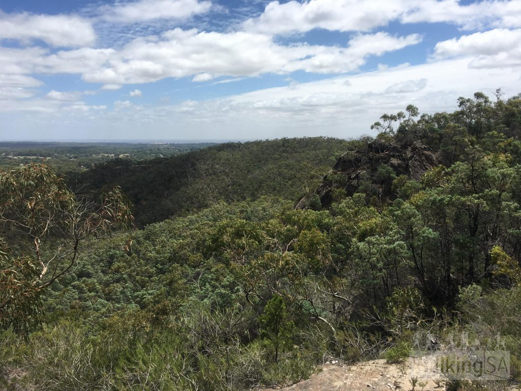 Views from the Hale Conservation Park Loop