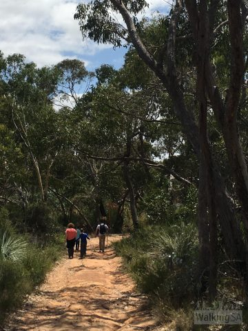 Walking the Hale Conservation Park Loop. The trail is suitable for families with children, visiting a waterfall, lookouts and small old mining sites.