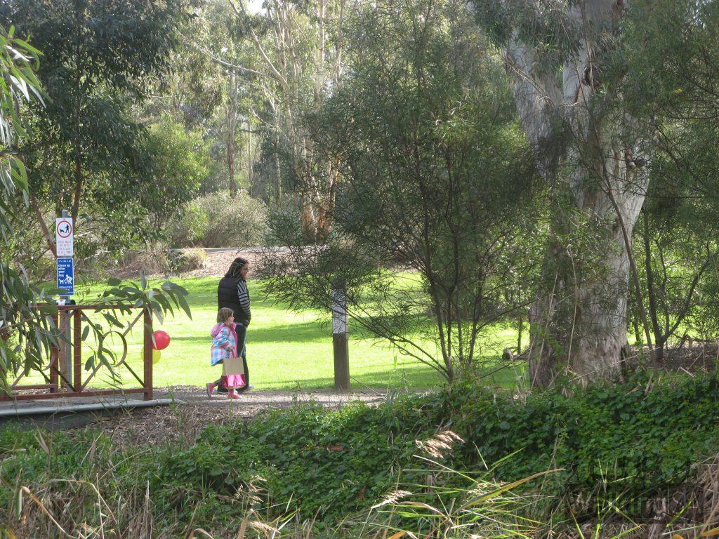 Walking trails in Laratinga Wetlands