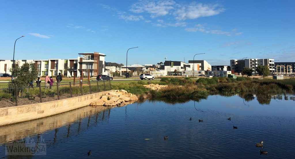 A walking loop around the St Clair Wetlands is a 2km accessible trail