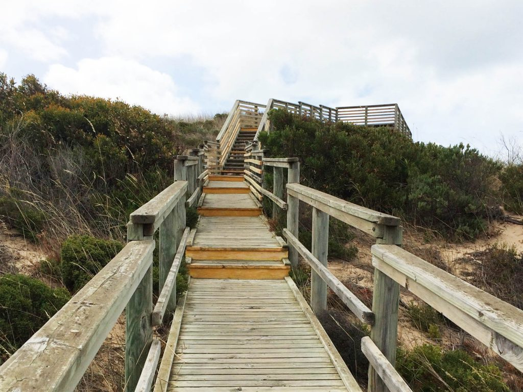 View up to lookout. The stairs begin halfway along