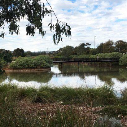 Curtis Wetlands, Munno Para
