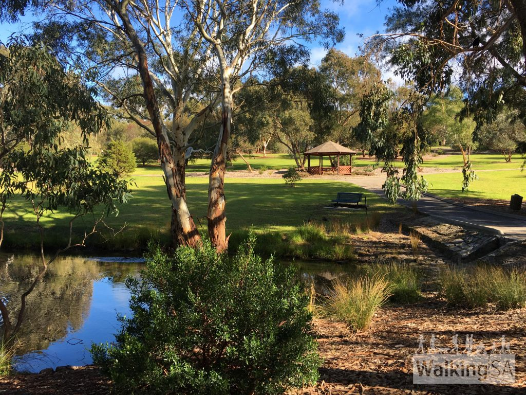 Picnic areas, rotundas and lawns surround the two lakes at Wittunga Botanic Garden