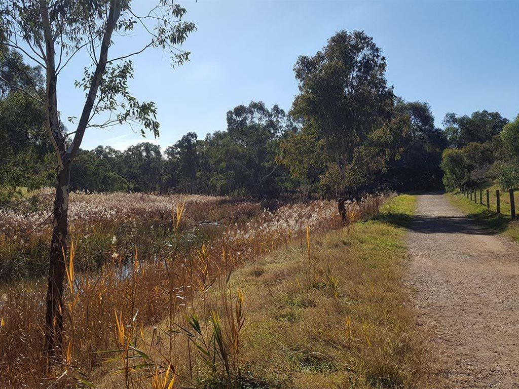 The Gawler Rivers (Tapa Pariara) Path