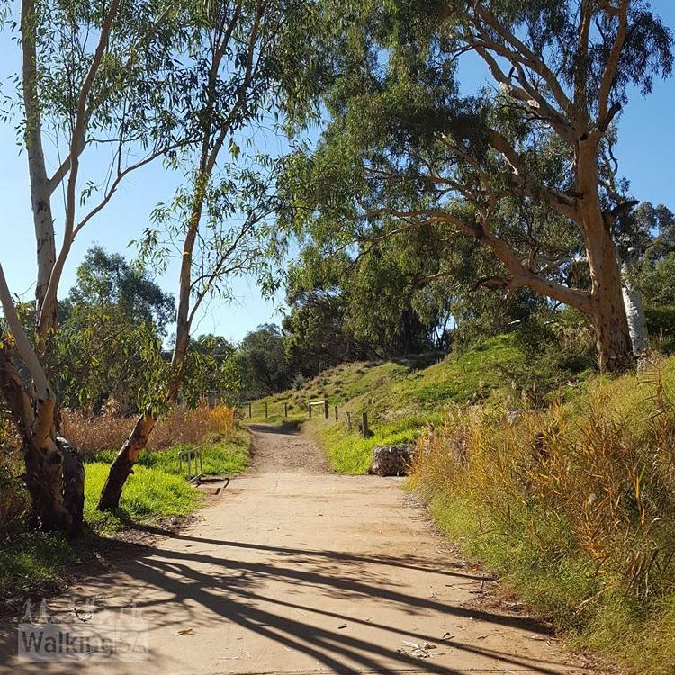 The Gawler Rivers (Tapa Pariara) Path follow the linear parks and three rivers that meet at Gawler