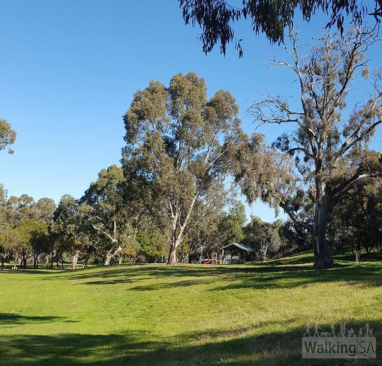 The Gawler Rivers (Tapa Pariara) Path passes through the pleasant Clonlea Reserve
