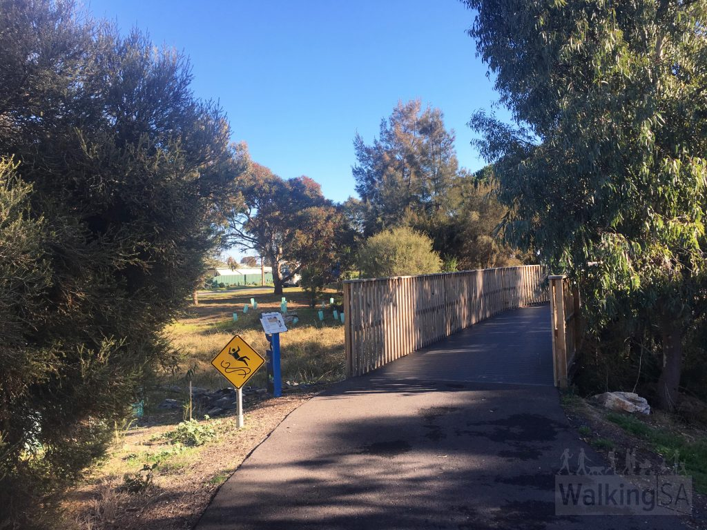 The trail follows Brownhill Creek as it drains out to the Patawalonga Lake