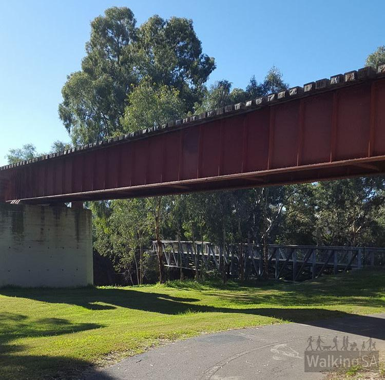 The trail passes under the railway bridge, and across one of the new footbridges constructed