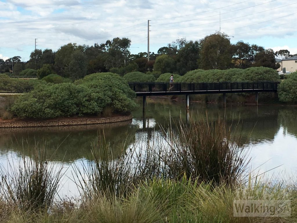 There are two walking trail loops at the Munno Para Wetlands
