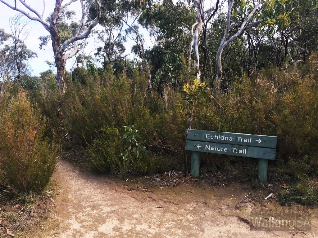As at mid 2017, the Echidna Trail and Nature Trail are just marked with these large signs. Although there are not more regular smaller trail signs, it is easy to follow both trails.