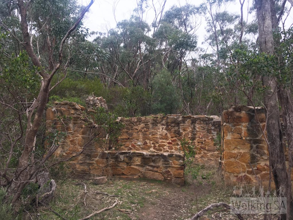 Ruins of an old two-roomed cottage on the Echidna Hike